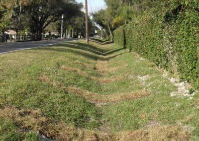 Reynoldswood Drive - Ehrlich Rd, Tampa, FL 001