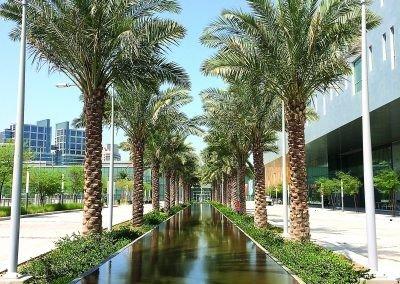 Cleveland Clinic, Abu Dhabi