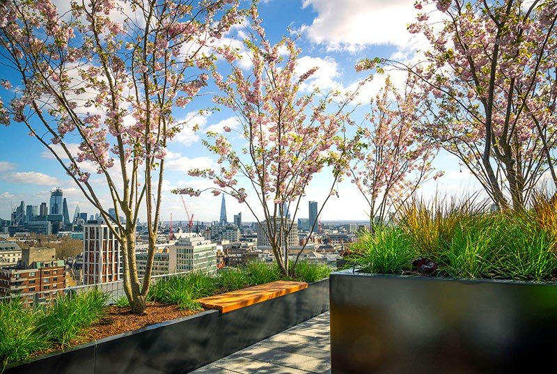 Post Building, London - trees planted into containers with Platipus Tree anchoring system
