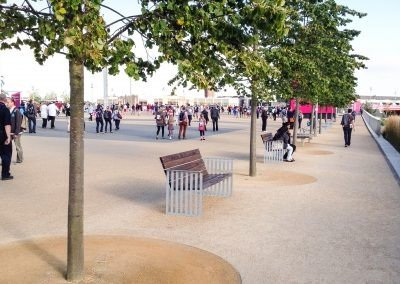 London Olympics trees with benches