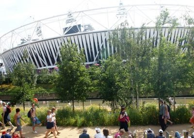 London Olympics tree installed with Platipus Tree Anchoring Systems